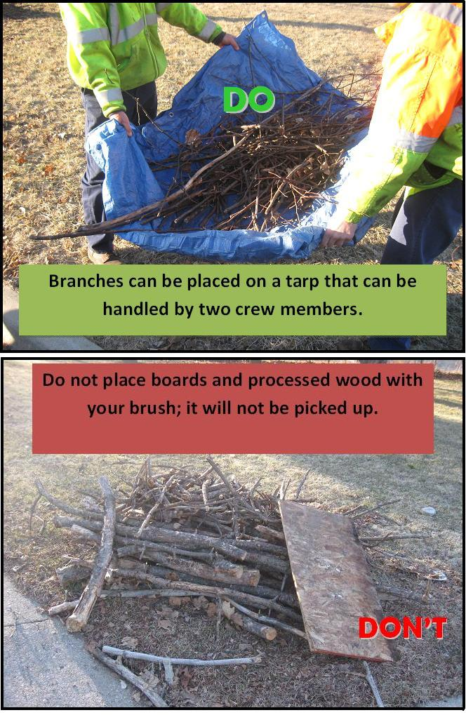 Branches on Tarp and Boards