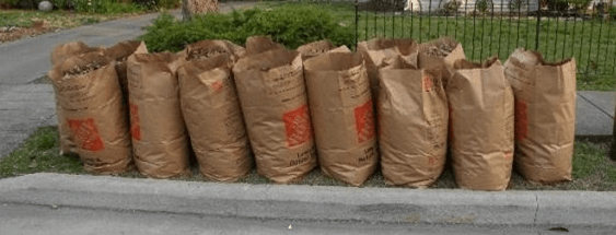Yard waste placed at the curb for collection